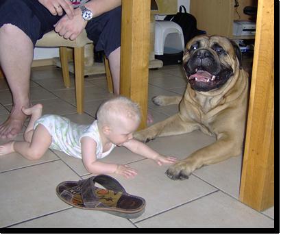 hond met kinderen, Ivan en Marlon