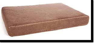 perfecte mand voor de bullmastiff, een matras